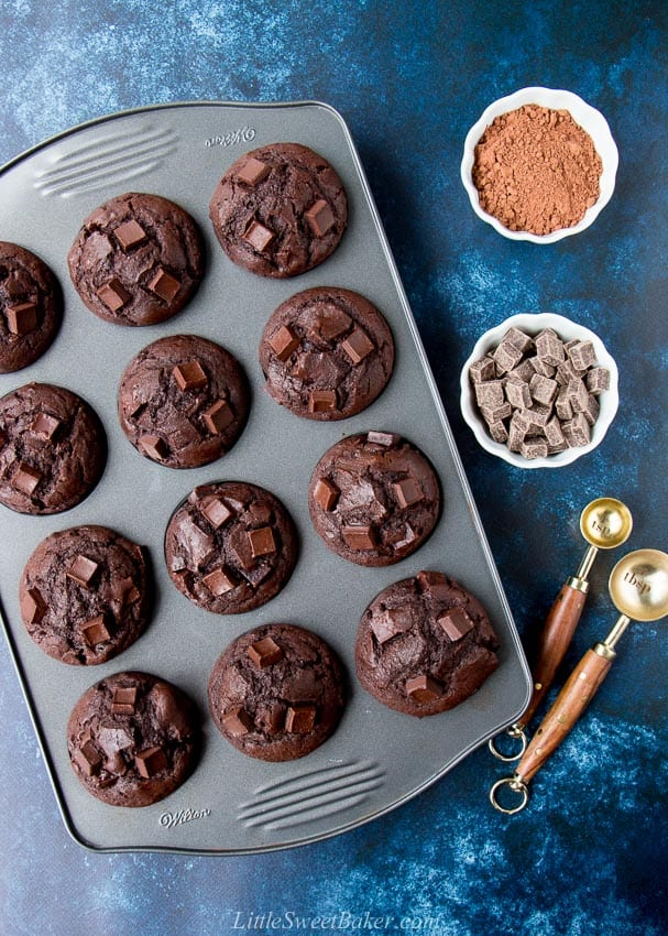 Overhead view of double chocolate muffins in a baking pan on a dark blue background.
