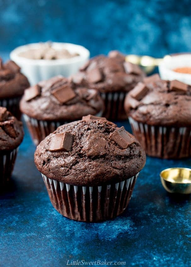 Double chocolate muffins with a dark blue background.