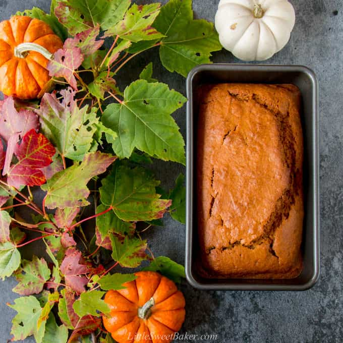 A loaf of pumpkin bread surrounded by fall leaves and mini pumpkins.