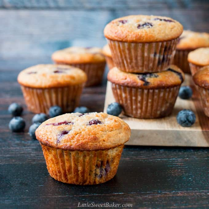 A healthy blueberry muffin with other muffins and blueberries in the background.