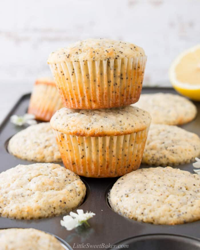 Two lemon poppy seed muffins stacked on a muffin pan.